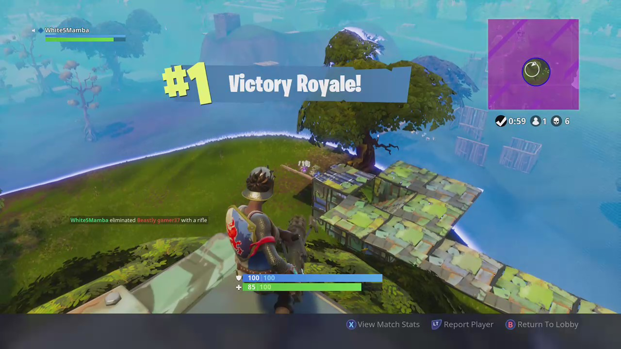 Fortnite battle royale how to win