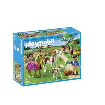 Playmobil belgique en francais